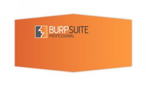 Burpsuite Profesional Edition