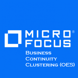 Business Continuity Clustering OES