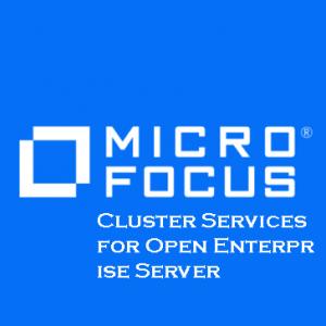 Cluster Services for Open Enterprise Server