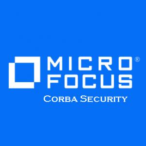 Corba Security