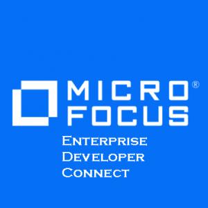 Enterprise Developer Connect