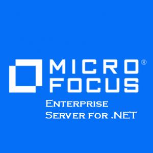 Enterprise Server for .NET