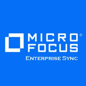 Enterprise Sync