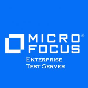 Enterprise Test Server