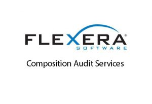 Flexera Software Composition Audit Services