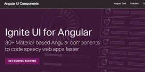 Ignite UI for Angular 1