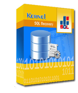 Kernel for SQL Recovery.