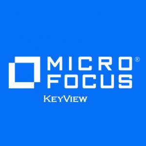 KeyView 1