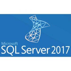 MICROSOFT SQL Server 2017 User CAL License