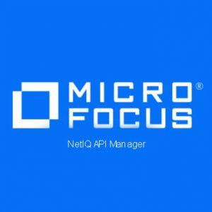 NetIQ API Manager