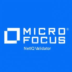 NetIQ Validator