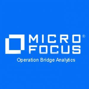 Operation Bridge Analytics