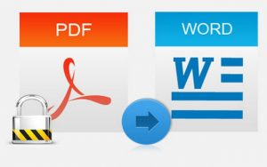 PDF to Word SDK