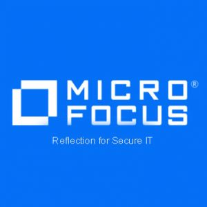 Reflection for Secure IT