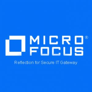 Reflection for Secure IT Gateway