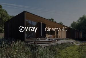 V RAY NEXT FOR CINEMA 4K 1