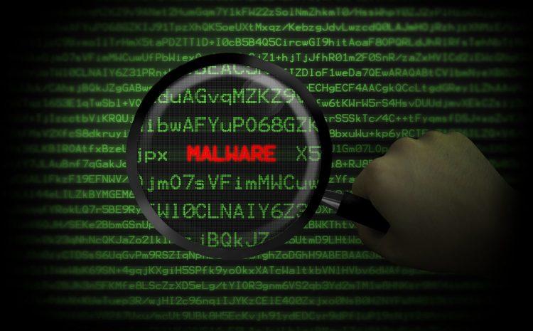 Malware Animation